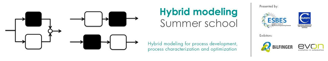 Hybrid Modeling